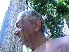Cabocla Tereza, parceria com Raul Torres.