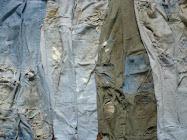 Revolucion Pantalonil