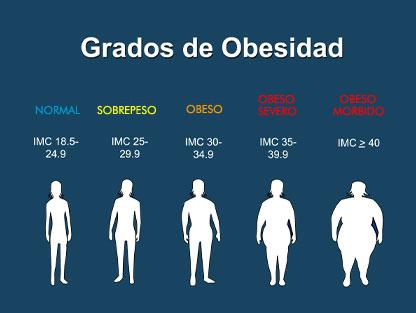 http://4.bp.blogspot.com/_RQJnlW6MgRY/TSScQ2MThZI/AAAAAAAAAyQ/PiTkzDpQMi8/s1600/grados-de-obesidad2.jpg