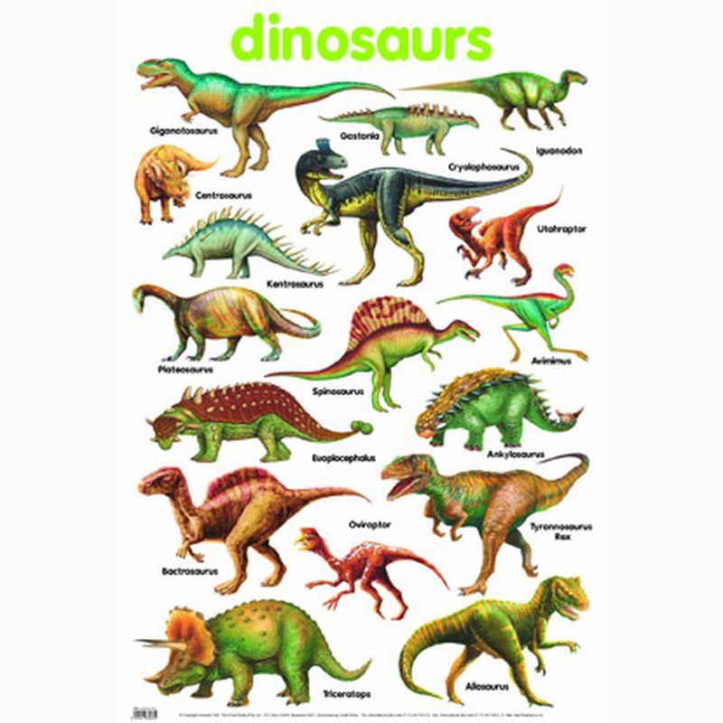 Dinosaur - The Prehistoric Mammals - An Overview