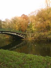 Park Kasprowicza jesienią