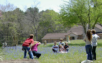 Click for Larger Image of Family Taking Photos in BlueBonnets