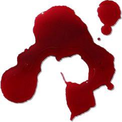 Blutfleck, sangre, accidente, Unfall, Fahrrad, Mexiko, México