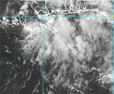 Atlantik aktuell: Tiefdruckgebiet mit möglichen Sturmwindstärken vor Louisiana, USA (Morgan City, Terrebonne Parish, Caillou Bay), 2010, aktuell, Atlantik, Hurrikansaison 2010, USA, Vorhersage Forecast Prognose, Louisiana, Bonnie