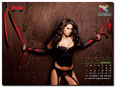 sexy calendar wallpaper. These calendar wallpapers are the true essence of high fashion for both the
