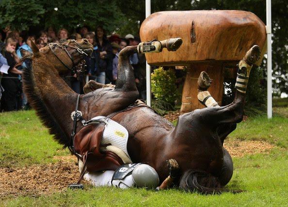 Bad Horse Falls Jumpin...