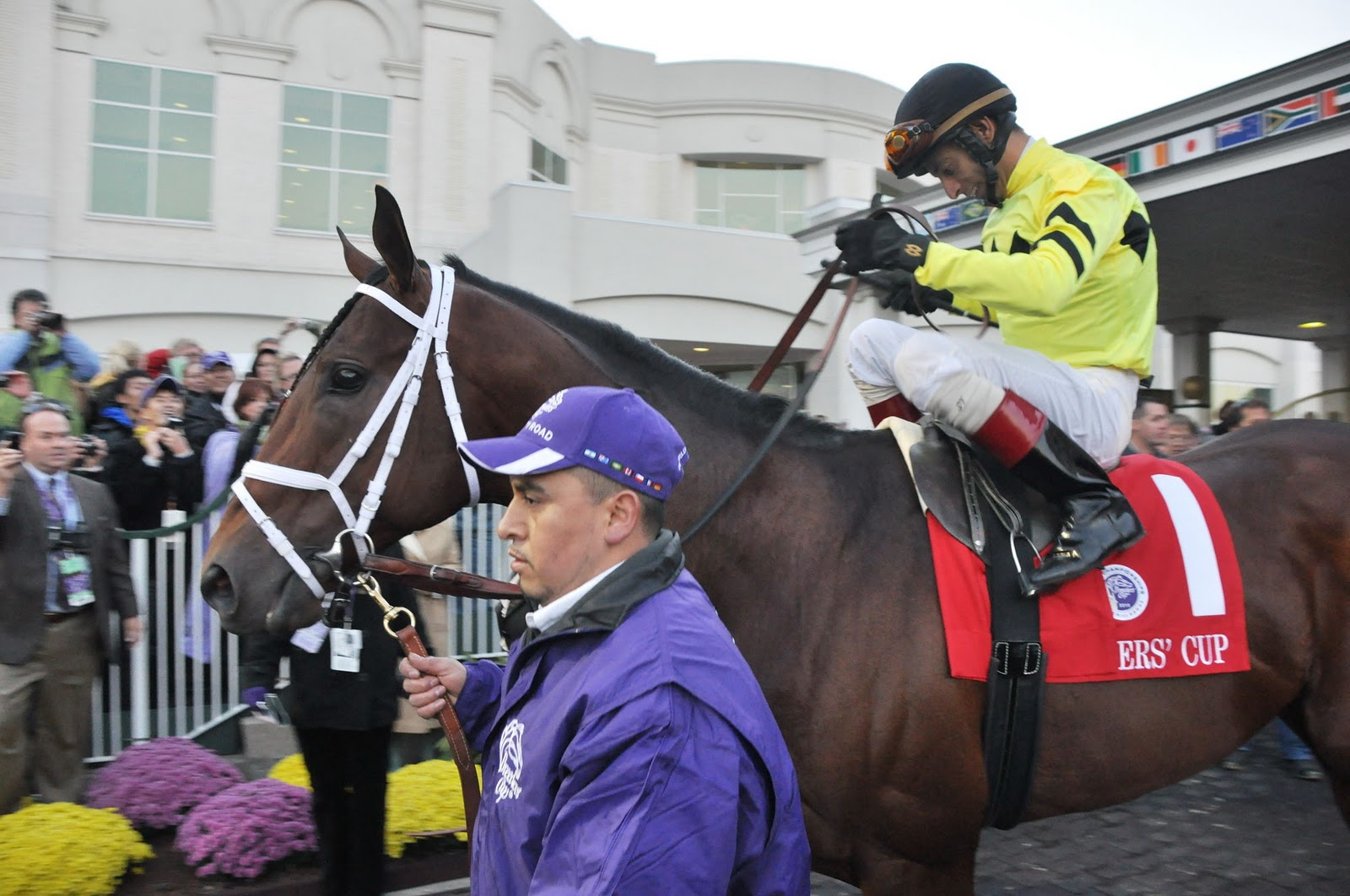 Breeders Cup Unkind To Va Breds Virginia Thoroughbred