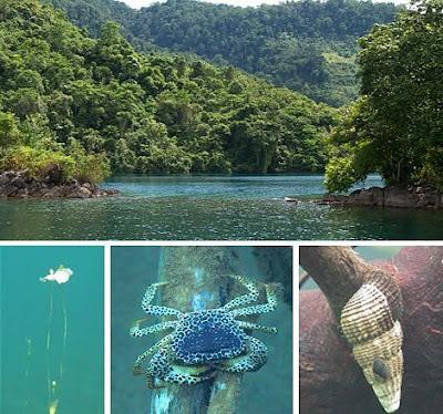 Lake Matano