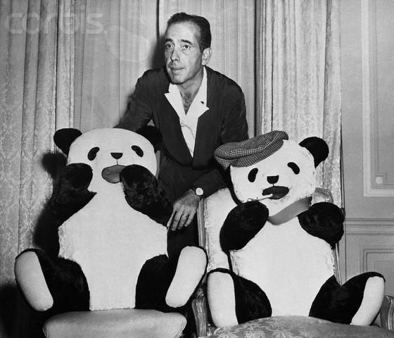 Bogart and Pandas