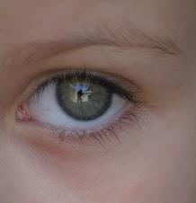 Os olhos da minha gatinha