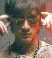 Wang Lee Hom / Wang Li Hong