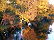 Sones e imágenes de otoño tordomar