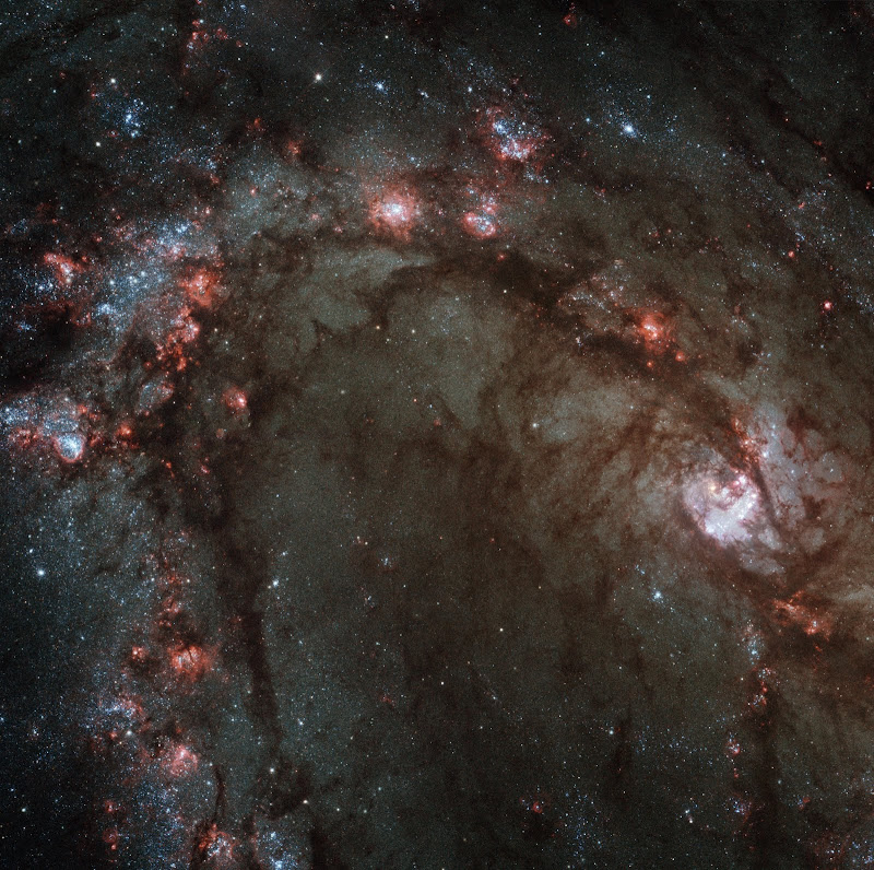 Star Birth in M83, the Southern Pinwheel