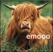 Visit Our Sister Site: Emo Cows