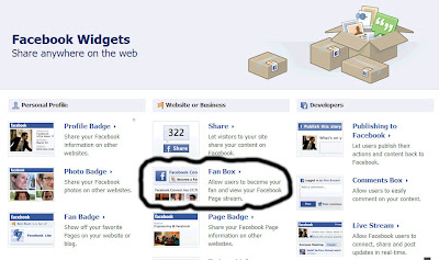 The Fan Box option on the Facebook Widgets page