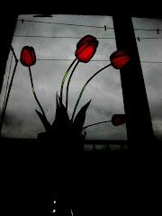 """Gėlės pražysdamos neklausia: """"Ar verta?"""""""