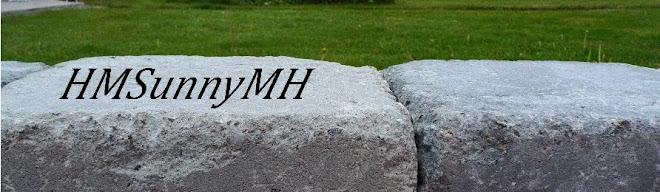 HMSunnyMH
