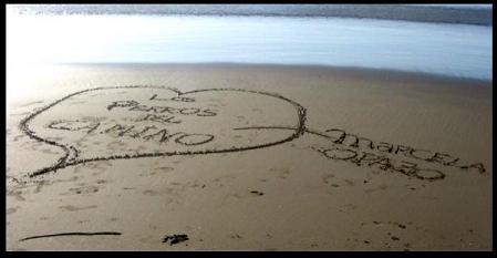 Tal como el mar borra los nombres en la arena, así borran a losperrosdelcamino.