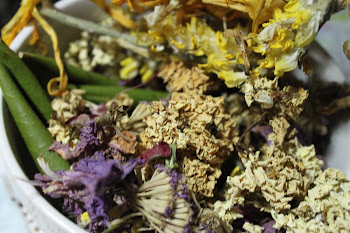 Home-made Potpourri
