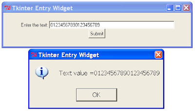 Python Tkinter Entry Get Value