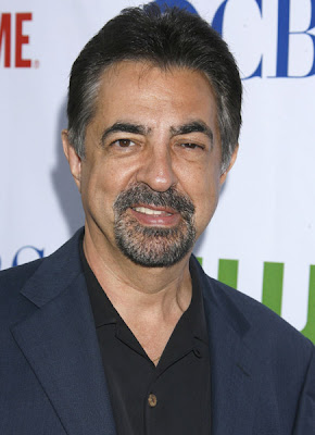 joe mantegna wife