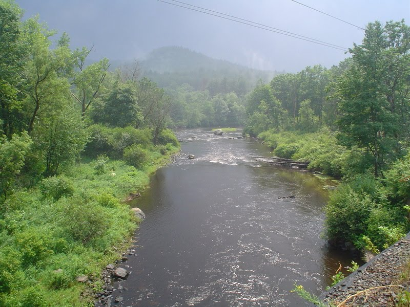 Millers swift ware and eb fly fishing forum welcome to for Best trout fishing in new hampshire