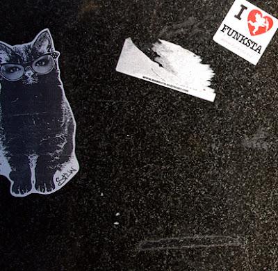 I love funksta & the weird cat thing