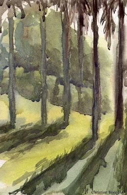 Australian watercolour painting