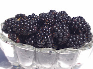 Fresh SLO Blackberries
