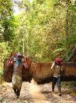 Là-Haut, carnet d'un voyage au Laos, Marine Richard