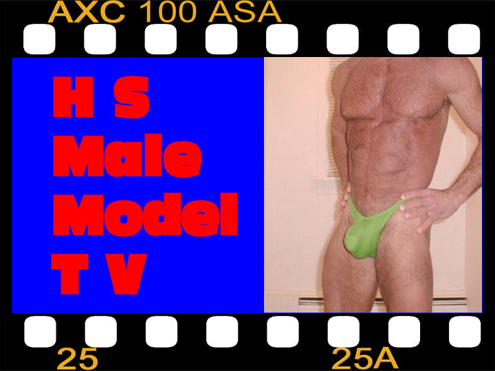 HS Male Model World