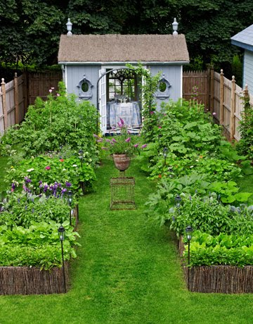 in fact time magazine wrote a great article called the incredible edible front lawn here