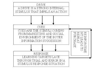 pavlovian model of consumer behaviour Online customer behaviour model defined and explained key factors influencing online consumer behaviour the fff model of online consumer behavior.
