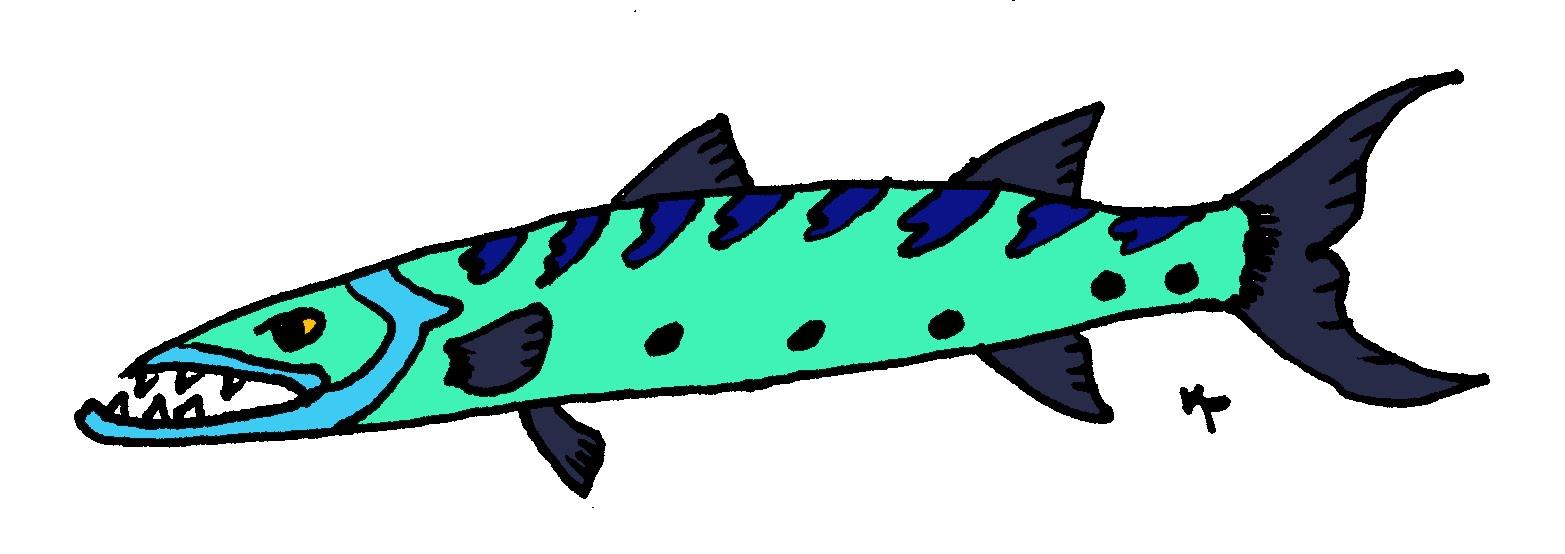 DraweringBoard: Barracuda!