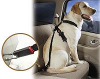 Dog Seat Belt Harness Uk