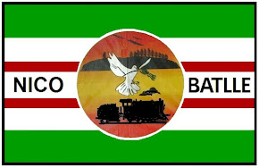 Nuestra bandera
