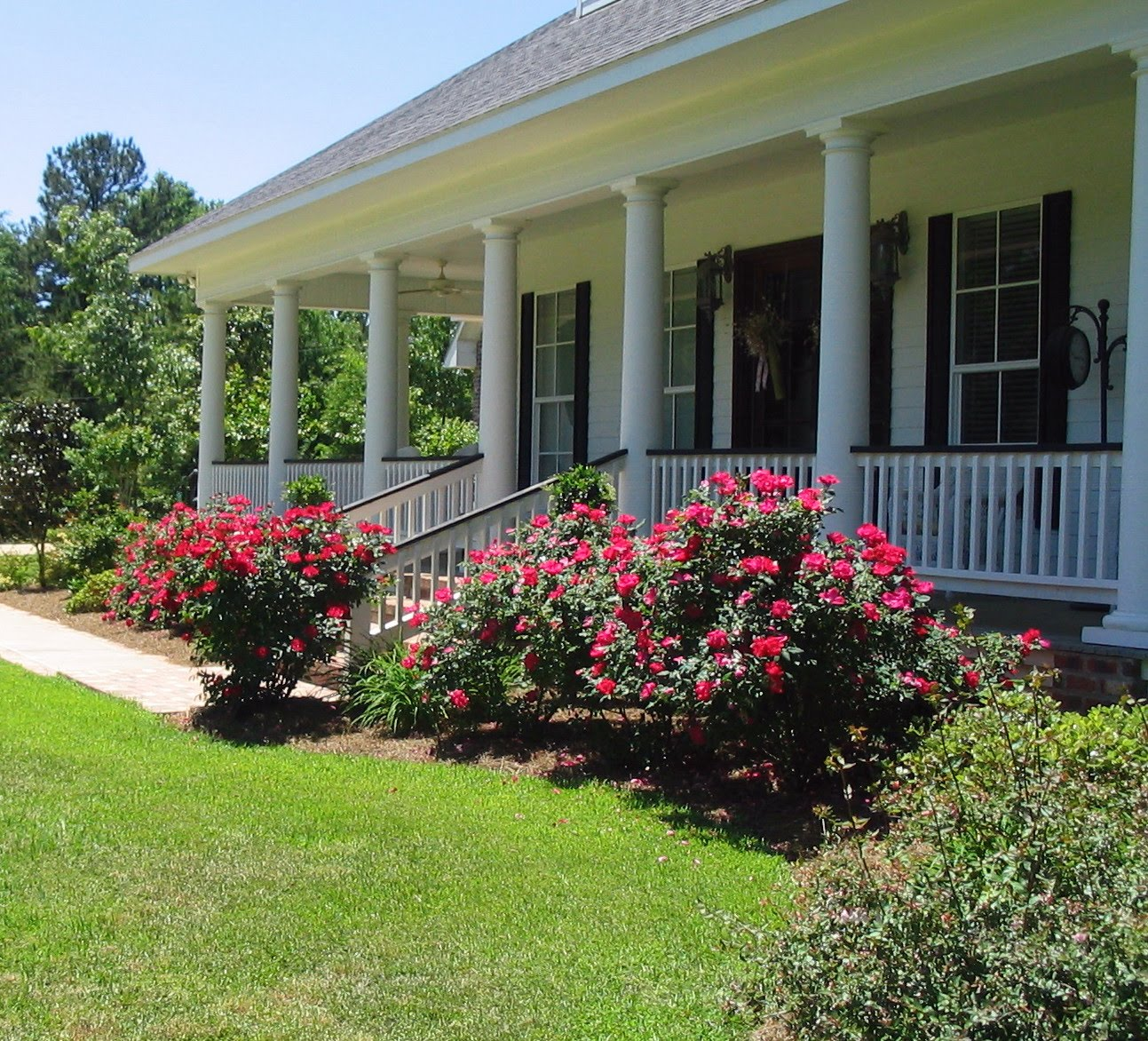 A southern belle dishes on decor outdoor wednesday 4 28 for How to plant bushes in front of house