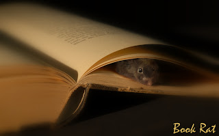 Book Rat Header