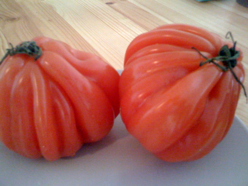 [heirloom+tomatoes]