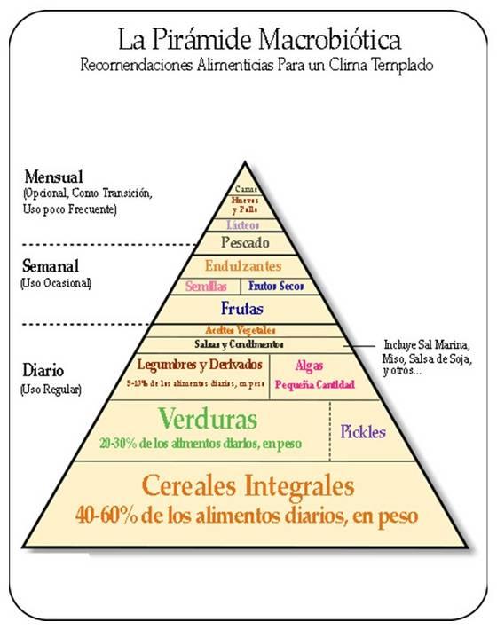 la alimentacion como medicina pdf