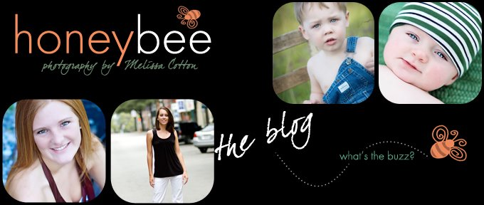 Honeybee Photography-The Blog