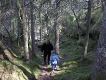 Skogstur i skogen vår
