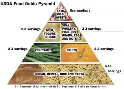 Weight loss diets bodybuilding