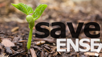 Save ENSE