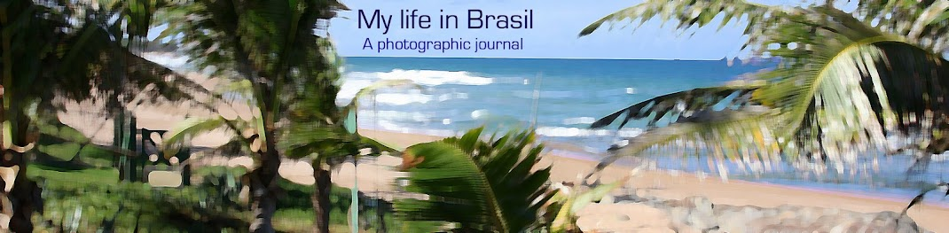Our life in Brasil and the U.S.A