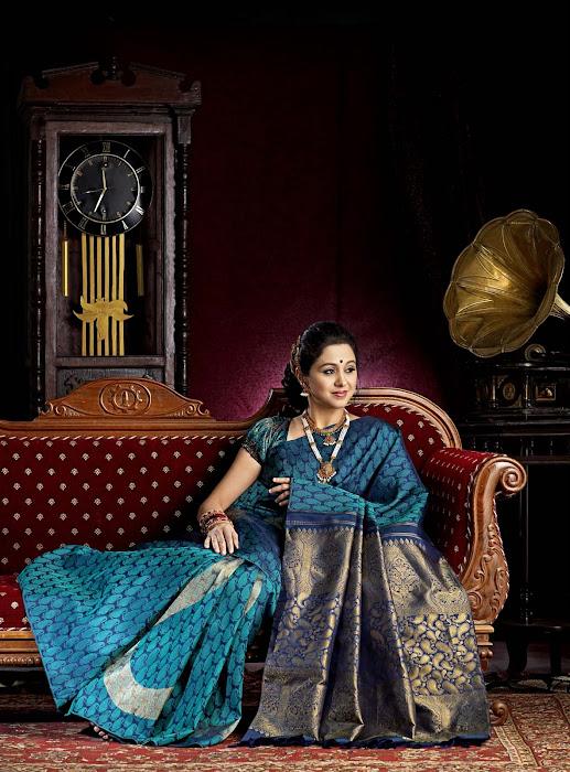 devayani in saree hot images