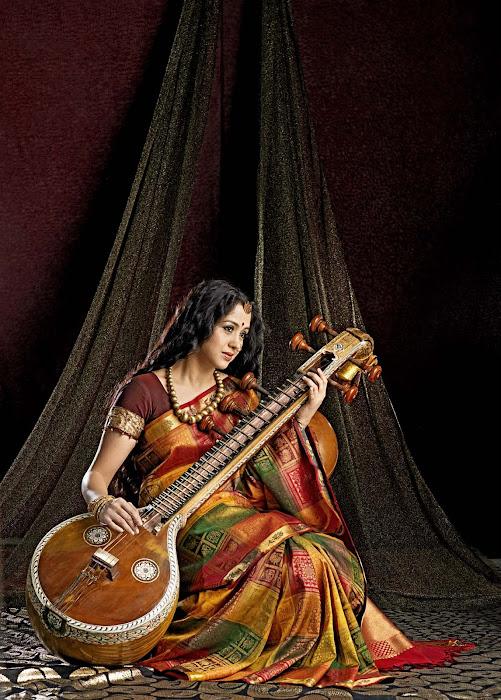 devayani in saree hot photoshoot