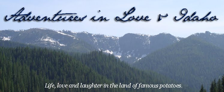 Adventures in Love and Idaho