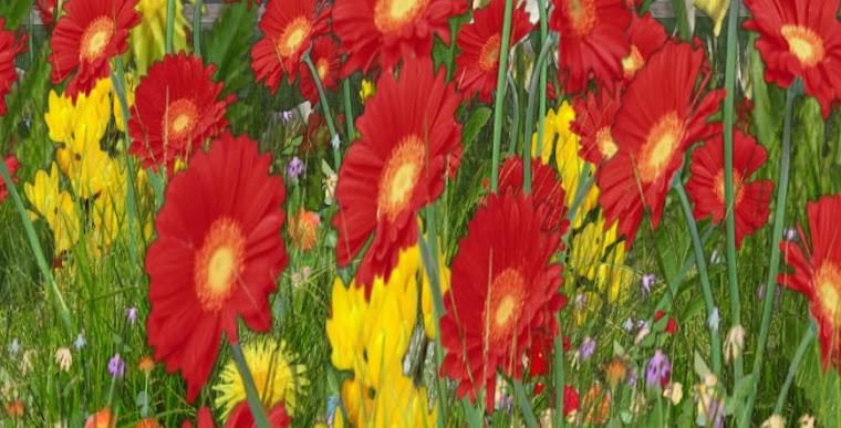 SL Flower Garden...