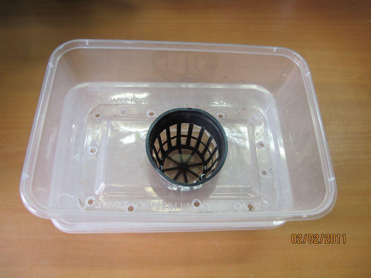Plant in principe du bac r serve d 39 eau par capillarit - Chasse d eau ne se remplit pas ...